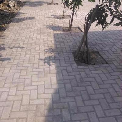 paving block Projek5